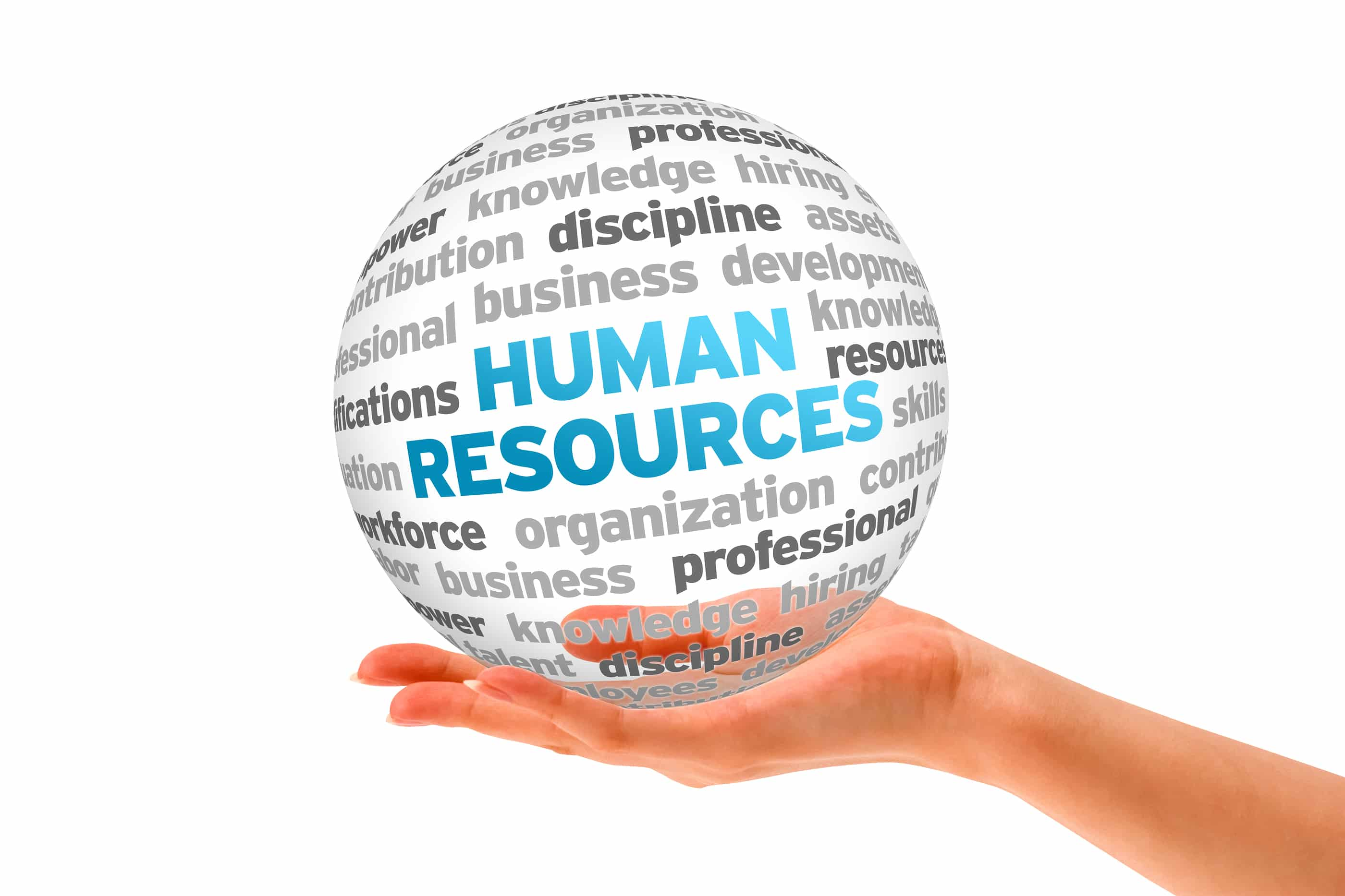 a study of the human resource department Top 5 benefits of human resource management published here comes the role of the human resource department in acting as a counsellor and a mediator to sort the.